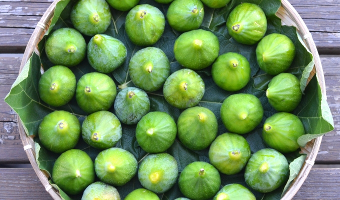 THE FOOD SERIES: Figs