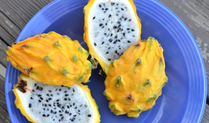 THE FOOD SERIES: Pitaya/Dragon Fruit