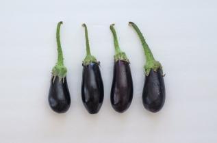 THE FOOD SERIES:Eggplant