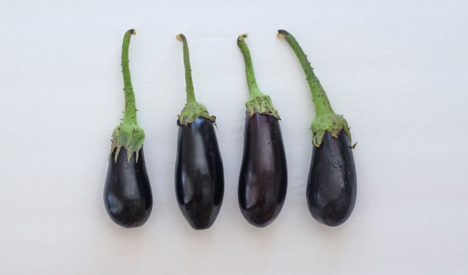 THE FOOD SERIES: Eggplant