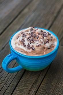 Chocolate and Vanilla Nice Cream