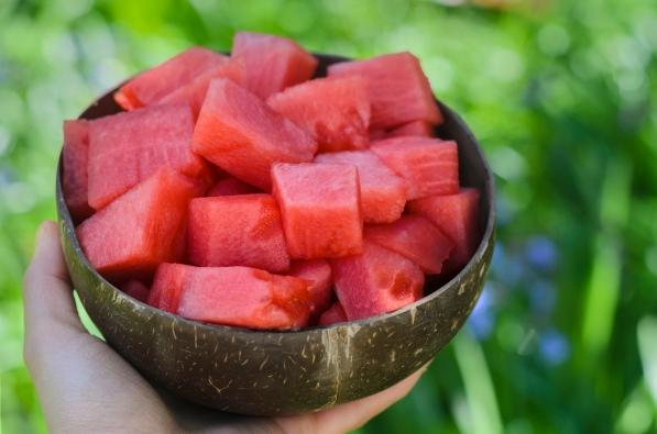 Bowl of Watermelon