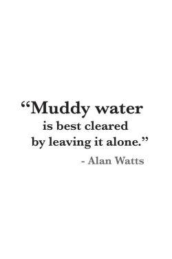 Muddywater